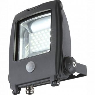 GLOBO 34219S | Projecteur-I Globo reflektor svjetiljka sa senzorom elementi koji se mogu okretati 1x LED 1500lm 6500K IP65 tamno sivo, prozirno