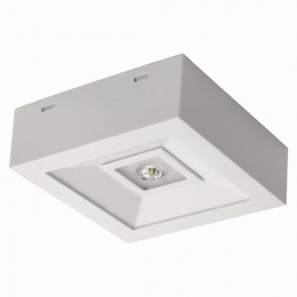 KANLUX 18640 | Tric-Powerled-NT Kanlux panik lampa svjetiljka može se montirati na zid ili na strop 1x LED 200lm 6000-8000K IP41 bijelo