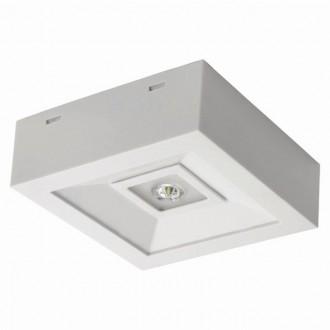 KANLUX 18641 | Tric-Powerled-NT Kanlux panik lampa svjetiljka može se montirati na zid ili na strop 1x LED 200lm 6000-8000K IP41 bijelo