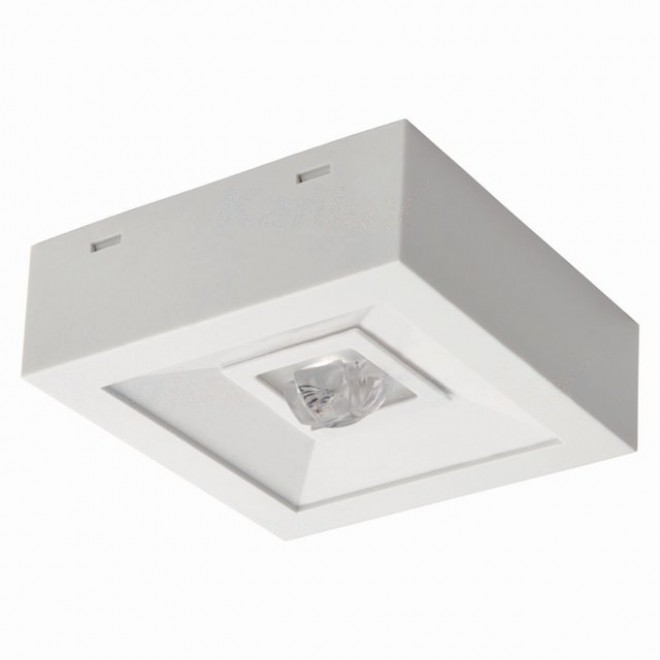 KANLUX 18643 | Tric-Powerled-NT Kanlux panik lampa svjetiljka može se montirati na zid ili na strop 1x LED 200lm 6000-8000K IP41 bijelo
