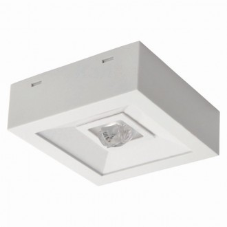 KANLUX 18644 | Tric-Powerled-NT Kanlux panik lampa svjetiljka može se montirati na zid ili na strop 1x LED 200lm 6000-8000K IP41 bijelo