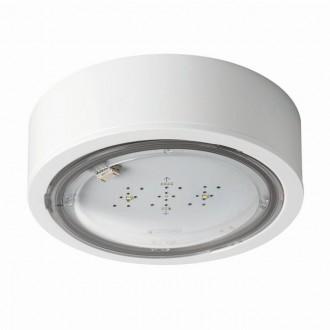 KANLUX 27381 | iTech Kanlux panik rasvjeta sa dve funkcije 1h - zidna, stropne svjetiljke, ugradbena svjetiljka okrugli 1x LED 475lm 5000K IP65 bijelo