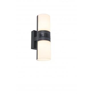 LUTEC 5198101118 | Cyra Lutec zidna svjetiljka elementi koji se mogu okretati 2x LED 1000lm 3000K IP54 tamno siva, opal