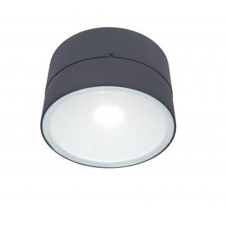 LUTEC 5626002118 | Trumpet-LU Lutec zidna svjetiljka elementi koji se mogu okretati 1x LED 1650lm 4000K IP54 antracit siva