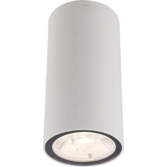 NOWODVORSKI 9111 | Edesa-LED Nowodvorski stropne svjetiljke svjetiljka 1x LED 250lm 3000K IP54 bijelo
