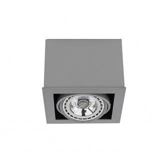 NOWODVORSKI 9496 | BoxN Nowodvorski stropne svjetiljke svjetiljka izvori svjetlosti koji se mogu okretati 1x GU10 / ES111 sivo