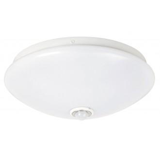 RABALUX 2500 | Seth Rabalux zidna, stropne svjetiljke svjetiljka sa senzorom 1x LED 780lm 4000K bijelo