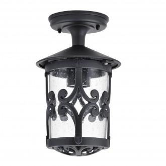 RABALUX 8539 | PalmaR Rabalux stropne svjetiljke svjetiljka 1x E27 IP23 crno, prozirno