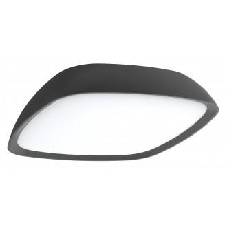 RABALUX 8797 | AustinR Rabalux zidna, stropne svjetiljke svjetiljka 1x LED 2000lm 4000K IP65 antracit siva, bijelo